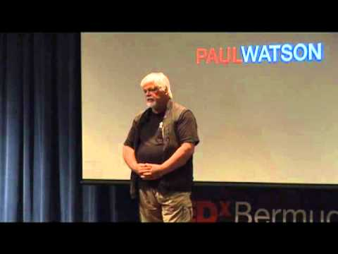 "Capt. Paul Watson - ""We are the passengers, and we are killing the crew"" - TEDxBermuda April 2011"