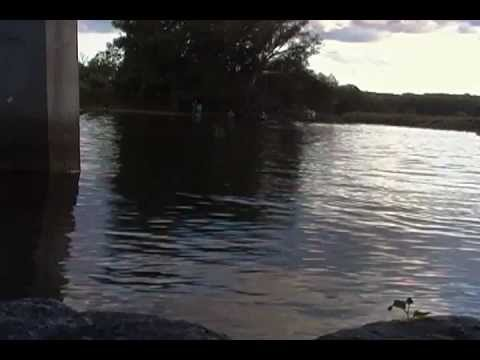 Salmon river pulaski new york salmon run 9 10 2012 youtube for York river fishing report