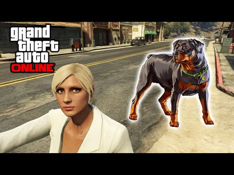 GTA 5 Online - Chop Guard Dog Online Mod Gameplay + Scuf One Review
