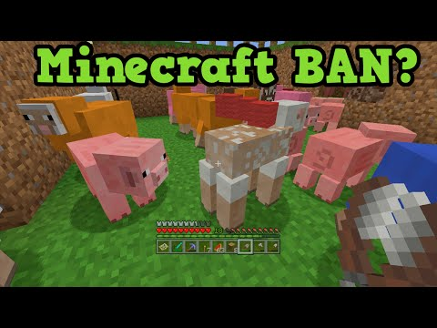 Minecraft BANNED For Violence in turkey - Government Confirms