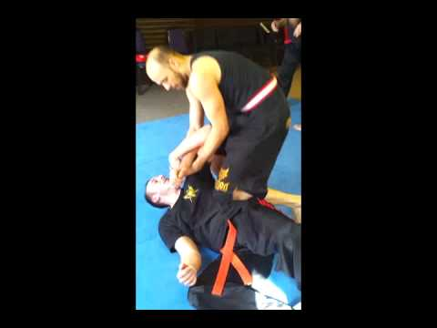 Total Martial Arts- Jun Fan techniques Image 1