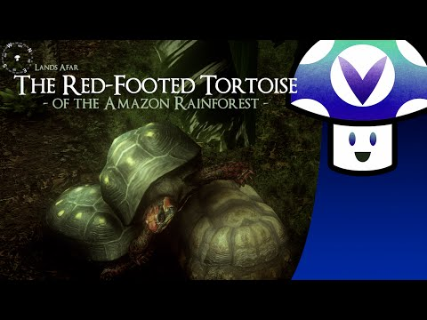 [Vinesauce] Vinny - The Red-Footed Tortoise of the Amazon Rainforest [Tortoise Simulator]