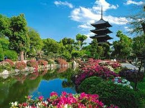 Japan Travel Video Guide