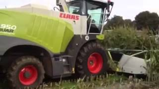 New claas 800 jaguar