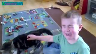 MOST Crazy Cats Annoying Babies, If You Laugh You Lose Challenge, Funny Cats