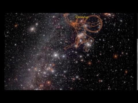 Planetario di Padova: toccare il cielo con gli occhi!