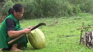 Primitive Technology - Survival skills - Primitive Cooking Big fruits, vegetables - Eating delicious
