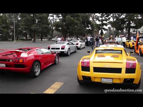 Lamborghini Line Up and REV!