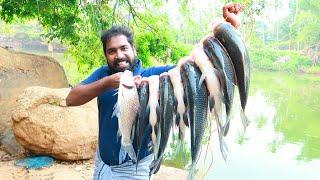 10 കട്ല മീൻ പിടിച്ച് നിർത്തി പൊരിച്ചത്   BEST CATLA FISHING VIDEO   BEST FISHING   KERALA FISHING