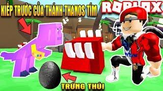 ROBLOX | Nuôi Chú Pet Khủng Long THANOS Tím Cùng 2 Cái Trứng Thúi | Dino Pet Simulator | Vamy Trần