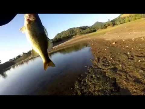 Topwater sexy dawg Hmong bass angler Hmong fishing ca rippin lips berryessa