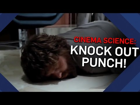 One Punch Knockout: Real or Fake? - Cinema Science - Brit Lab
