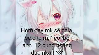 B? ?nh 12 cung anime siu ?p?| Black Cat VN