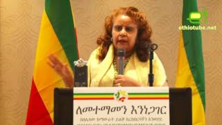 Ethiopian Council for Reconciliation and Restorative Justice - Sewasew Yohannes's Speech