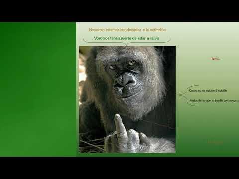 ENIGMAS NOTABLES 23 -- ANIMALES INCREIBLES 2/2