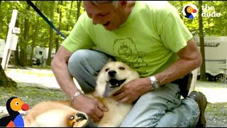 Special Dog Rescued by Man Who Drives Across the Country To Save Him | The Dodo: Comeback Kids