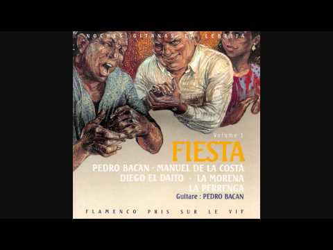 Pedro Bacan 'Noches Gitanas' Flamenco