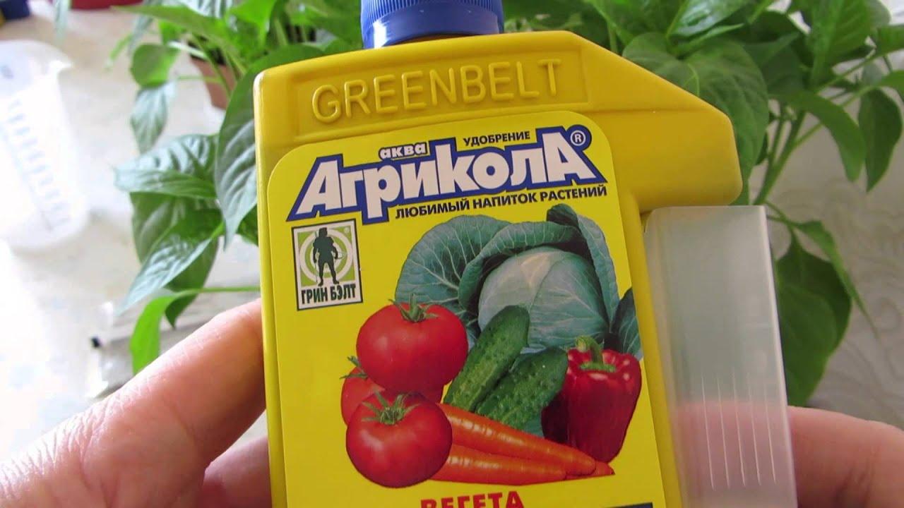 Народные подкормки для рассады томатов 864