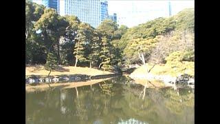2019.01.05. Tokyo