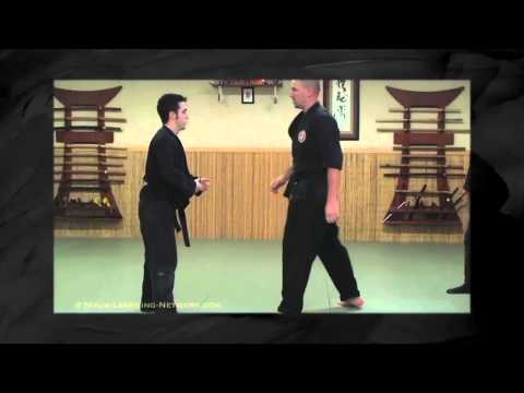 Bujinkan Lesson: Black Belt Basic Countering - Ninjutsu Training Image 1