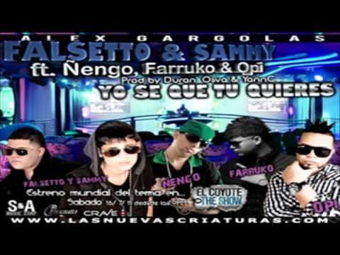 Yo Se Que Tu Quieres (Remix) - Falsetto & Sammy Ft Ñengo, Farruko & Opi ★HoyMusic.Com★ Music Videos