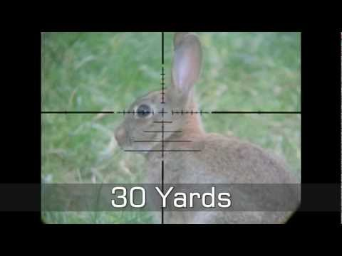 Slow Motion Airgun Rabbit & Pigeon Hunting #11