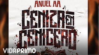Anuel AA - Ceniza En Cenicero [Official Audio]