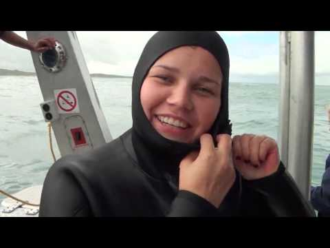 Reponsible Tourism Week 2013 - Thank you clients! | Marine Dynamics shark tours