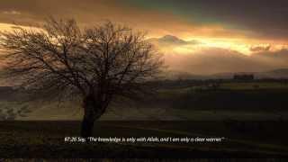 Moutasem Al-Hameedi | Surah Al-Mulk | Soothing Recitation