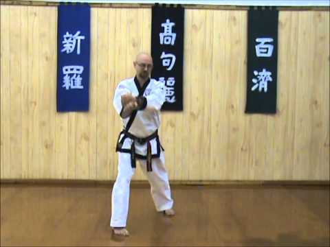 Tang Soo Do - Single Step Drill - Sequence 3 Image 1
