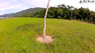 DJI Phantom Crashing Into Tree And Knocking Out NAZA
