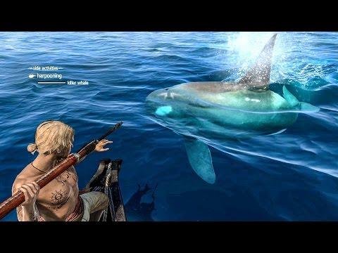Assassin's Creed 4 Black Flag Ship Combat , Harpooning & Stealth