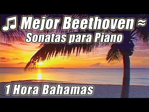 Musica Clasica para el estudio de mejores canciones estudio Beethoven Sonatas Piano Instrumental Pla