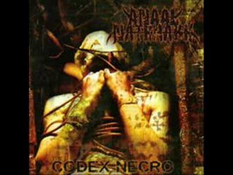 Anaal Nathrakh - When Humanity Is Cancer