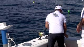 Fipsas   29 Campionato Italiano Big Game Tuna Fishing  Jesolo
