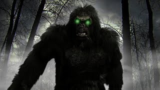 BIGFOOT CAUGHT ON TAPE | Finding Bigfoot Game - Capture Bigfoot - Lets Play Finding Bigfoot #3
