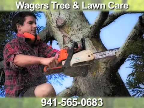 Wagers Tree & Lawn Care, Bradenton, FL