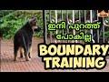 "dog training : "" boundary training ""  Malayalam: വളര്ത്തു നായയെ പരിശീലിപ്പിക്കാം : ബൗണ്ടറി training"