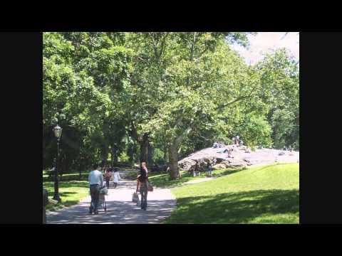 A Walk through Central Park - Manhattan, New York City, New York