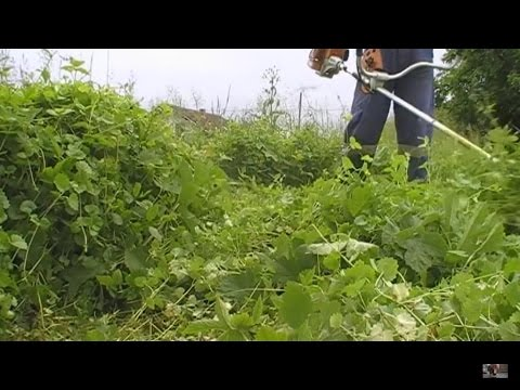 Using my Stihl FS 85 brushcutter in high grass with the brush knife/blade on pt. 1