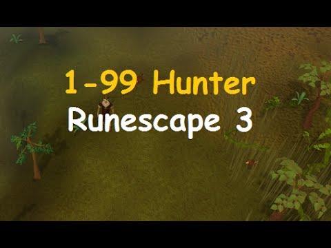 Runescape Guide: 1-99 Hunter Guide 2014 Fastest Method