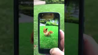 Pokemon GO AR playground mode!