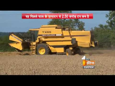 Production of Wheat  | Part – 2  | First India News