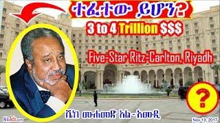 ሼክ መሐመድ አል-አሙዲ ተፈተው ይሆን? Sheikh Al Amoudi Current Status - DW