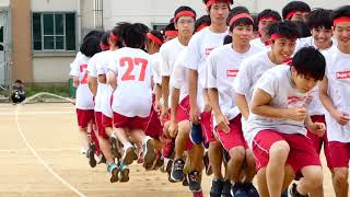 Japanese high school sports festival! ???! | EXCHANGE YEAR JAPAN