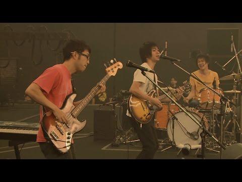 LAST LIVE DVD「andymori ラストライブ 2014.10.15 日本武道館」から『ベンガルトラとウィスキー』
