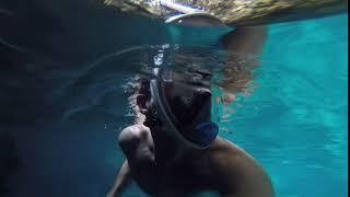 hoya azul   scape park   punta cana 11 14 18     underwater dive 2 2