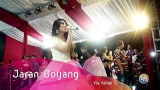 download lagu Via Vallen - Jaran Goyang Live Samarinda gratis
