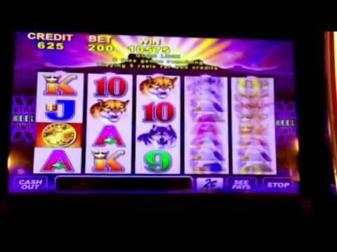 Buffalo  slot  bonus win  Resorts  World  casino  NYC