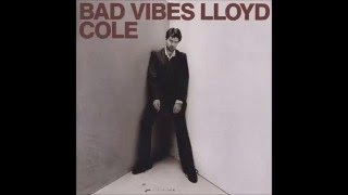 Watch Lloyd Cole So Youd Like To Save The World video